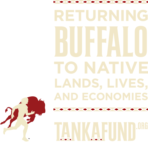 "Text reading ""Returning Buffalo to Native Lands, Lives, and Economies"" with a logo of a person and a buffalo."